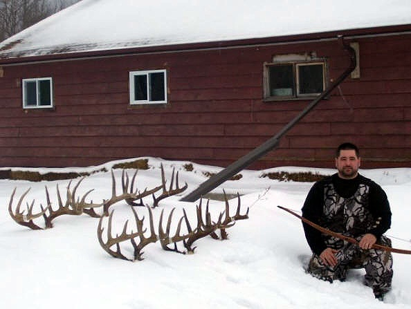 Darren Ship Wild North Taxidermy